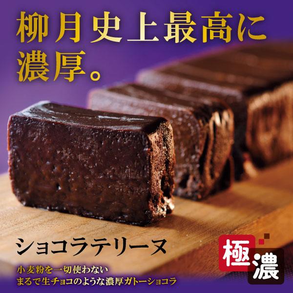 ショコラテリーヌ【冷凍発送】